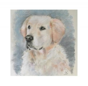 Retriever dog in pastel